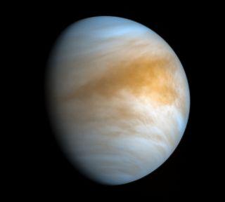 Venus din orbita